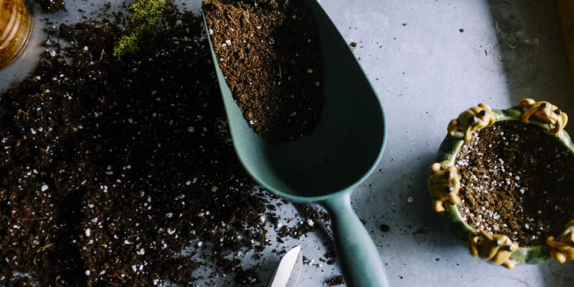 Jetzt noch Zeit? Tipps für einen ländlichen Garten!